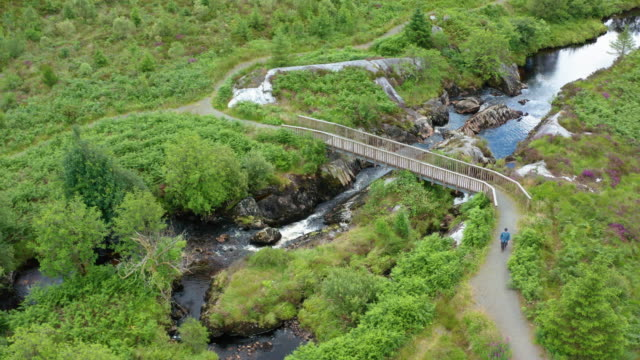Active senior man walking over a small wooden footbridge over a small river in a remote rural area of Dumfries and Galloway video