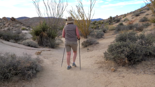 Active Woman With Trekking Sticks Hiking In The Mojave Desert Park Joshua Tree Hiking active mature women with trekking poles, walking the footpath in the Mojave desert. Joshua Tree National Park America. A healthy way of life. Back view, slow motion. Slow motion, 4k 3840x2160. mojave desert stock videos & royalty-free footage