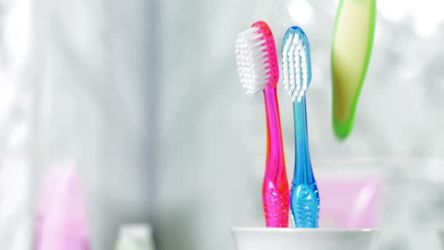 Adding Child Toothbrush into the Holder. Child Birth Concept video