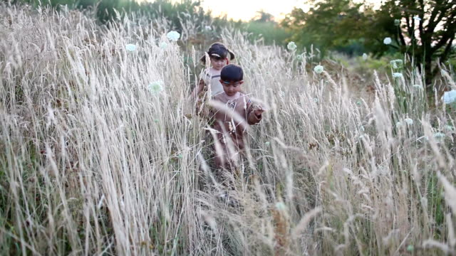 Adorable Kids Walking Through Tall Grass in Halloween Costumes, Video video