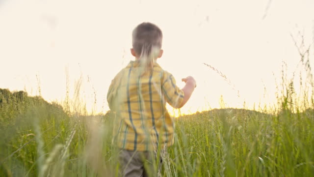 SLO MO Adorable little boy in the grass video