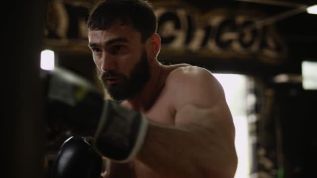 vídeos y material grabado en eventos de stock de boxer adulto en negro guantes de boxeo golpea el saco de boxeo. boxeador en el gimnasio - puñetazo