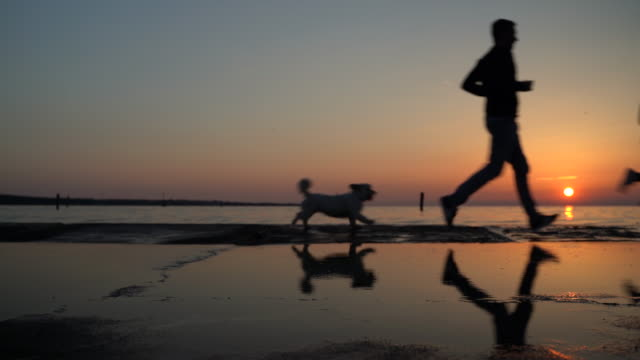 Adult Couple Running on Coastline With Their Dog During Sunset