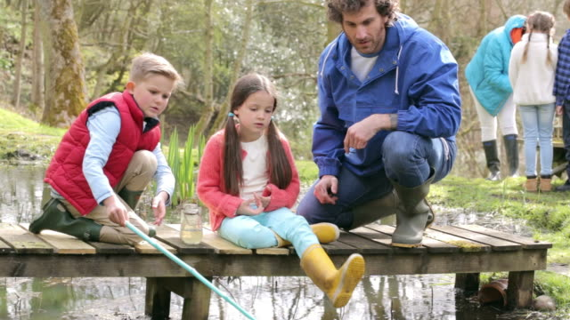 Adult With Children On Bridge At Outdoor Activity Centre video