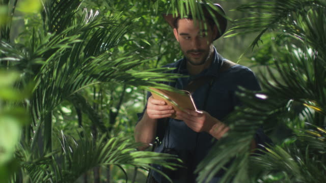 Adventurer in Hat using Tablet in Jungle Forest. video