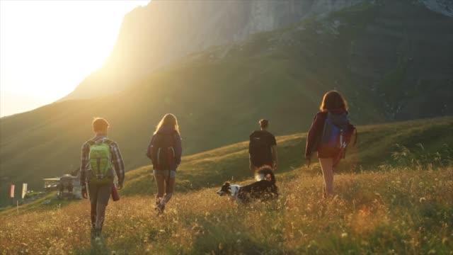 adventures on the dolomites: teenagers with dog - турист с рюкзаком стоковые видео и кадры b-roll