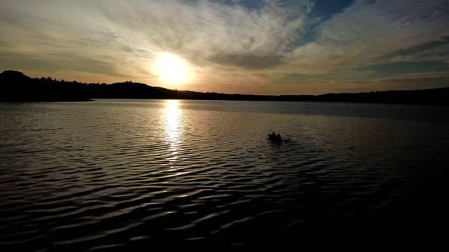 vídeos de stock, filmes e b-roll de casal de aventureiros remando no lago - remo esporte aquático