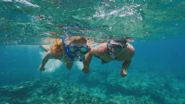 vídeos y material grabado en eventos de stock de pareja aventurera snorkeling juntos - tubo