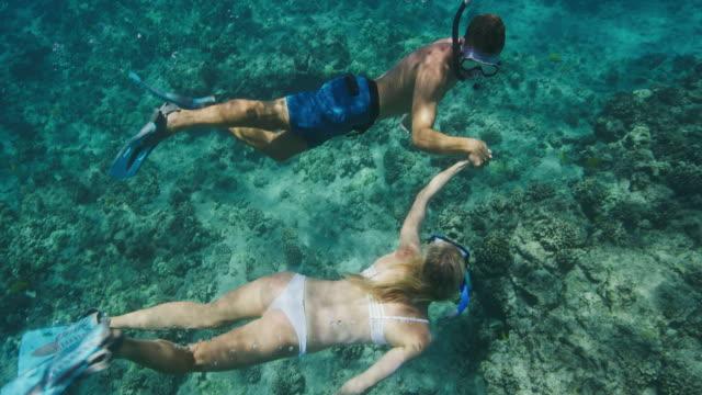 Adventurous couple snorkeling together video