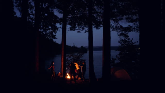 Adventurous youth is dancing around campfire in forest near beautiful lake on summer night, friends are having fun and relaxing at weekend. Nature and millennials concept.