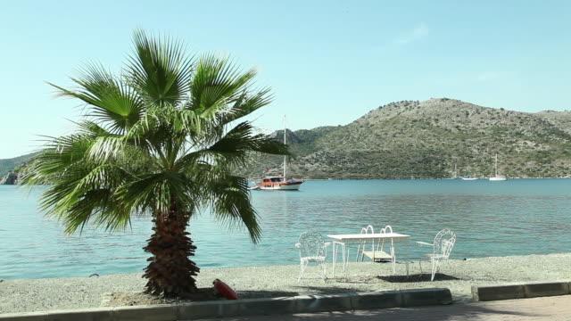 aegean sea coast and decorative chairs by the sea with palm tree/datca town,mugla                       mugla/turkey 10/04/2018 - morze egejskie filmów i materiałów b-roll