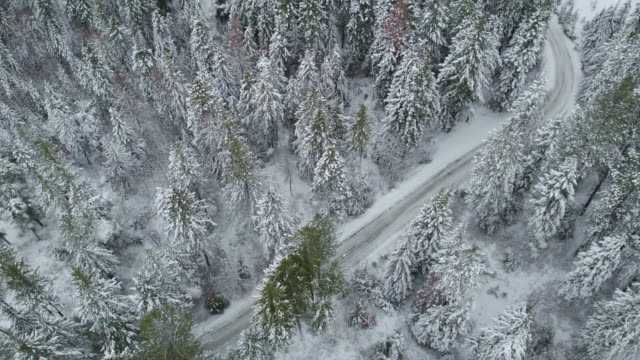 aerial 4k: establishing shot of a snow-covered road - strada transitabile video stock e b–roll