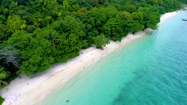 aerial: a couple walks along the beach with white sand and turquoise water. - young couple wedding friends video stock e b–roll