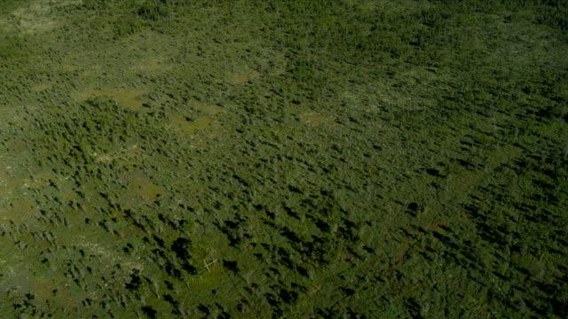 veduta aerea sopra vista nord delta riserva naturale, vancouver - fiume fraser video stock e b–roll