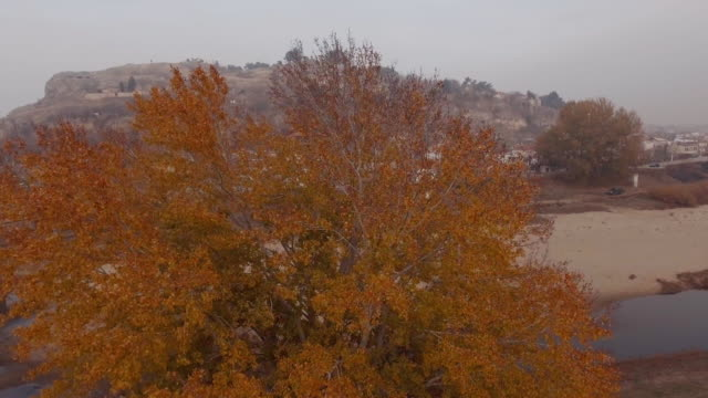 Aerial - Autumn - Trees, leaves and a river 2 video