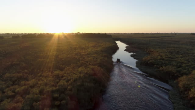 Aerial backlit view of a tourist boat making its way down waterways of the Okavango Delta at sunset video