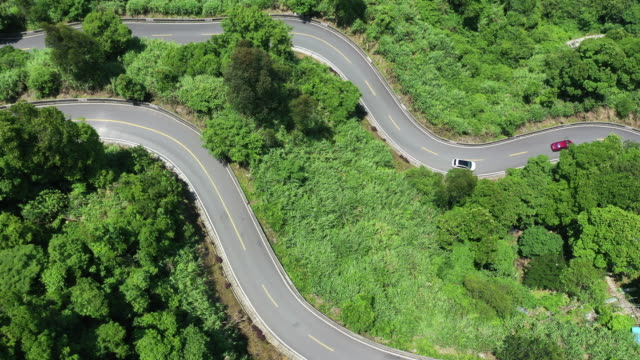 Aerial bird's eye view of the curved La Qingshan Road in the woods.
