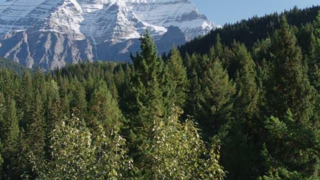 Video Aerial British Columbia Rockies Robson Mount.mov
