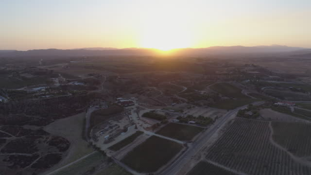Aerial California wine country vineyards video