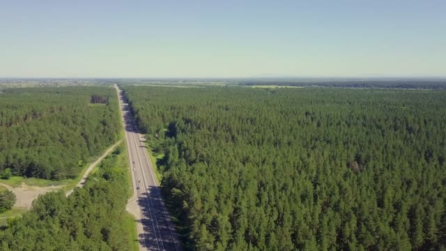 Aerial: Cars move along the highway through coniferous forest. In the distance you can see the fields, the villages.
