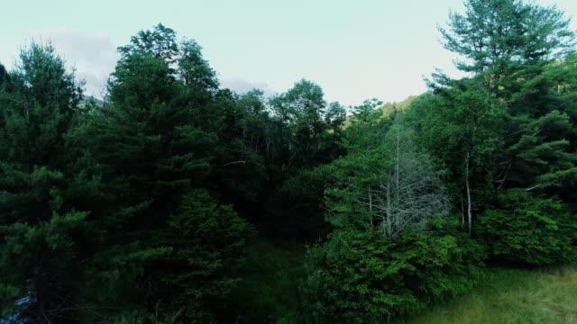 aerial catskills montagne fiume tramonto estate - monti appalachi video stock e b–roll