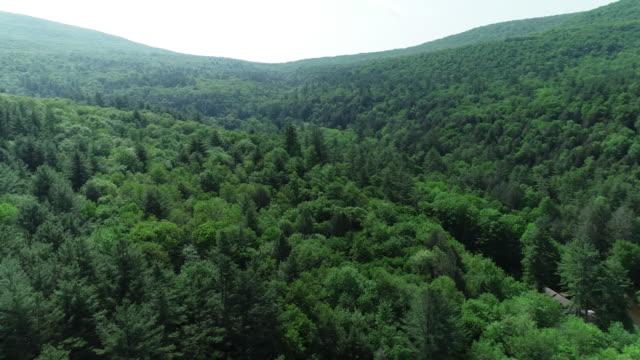 antenn catskills berg väg bilar flod skogen sommaren new york - appalachia bildbanksvideor och videomaterial från bakom kulisserna