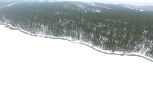 4K Aerial. Coast of  frozen lake and wood .  Winter Landscape