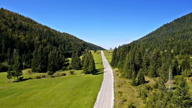 Aerial: descending above the car road in spruce forest valley with green field