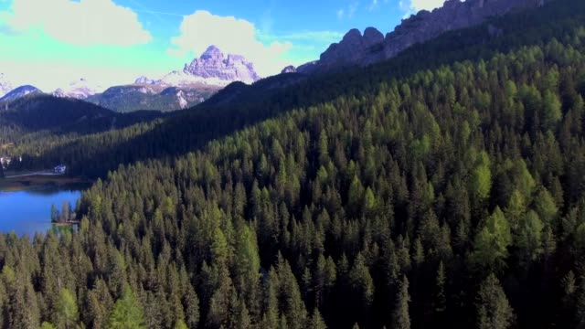 Aerial Dolomite Mountain over pine forest Aerial,Mountain pine tree stock videos & royalty-free footage
