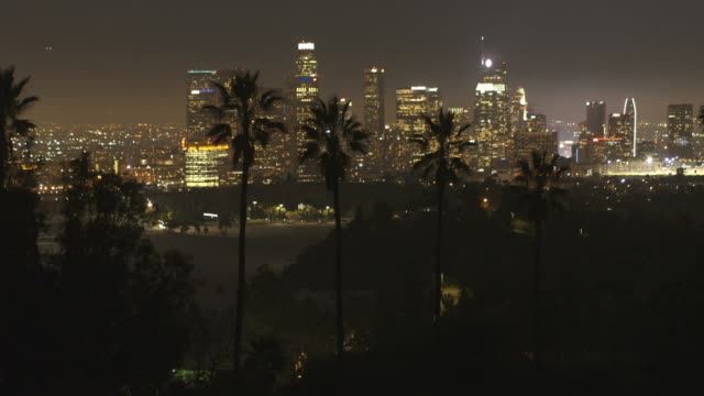 aerial downtown los angeles palm trees night - los angeles стоковые видео и кадры b-roll