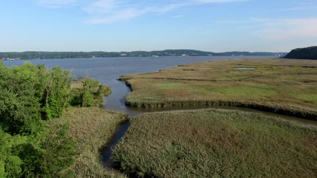 Aerial Drift Over Pallisades Marsh Camera flies over Palisades marsh on a beautiful sunny day towards large river and tree covered hill. marsh stock videos & royalty-free footage