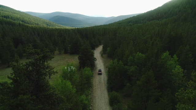 Aerial Drone ATV crossing on dirt road Colorado forest between the Rocky Mountains 4k 60fps