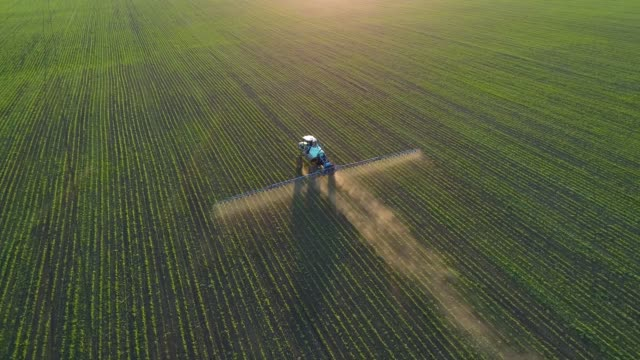 4K aerial drone footage. Following tractor sprayer on soybean fields at sunset