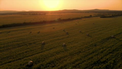 vídeos de stock e filmes b-roll de aerial drone footage in a sunset light over the meadow with bales - cena rural