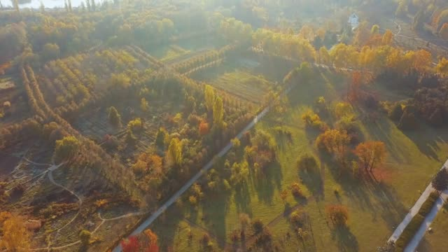 Aerial drone footage of park during sunset, autumn colorful vibe.