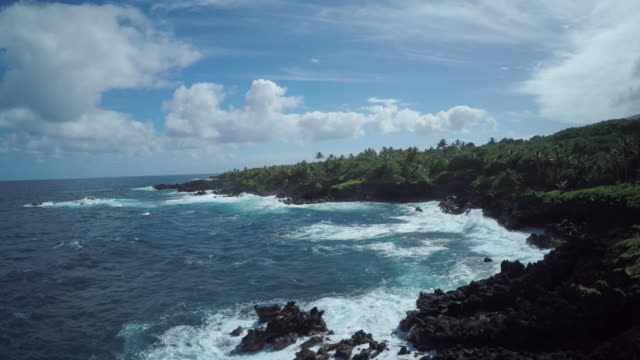 4K Aerial Drone Maui, Hawaii, Hana Coast Lava Rock video