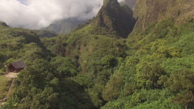 4K Aerial Drone Maui, Hawaii Iao Valley video