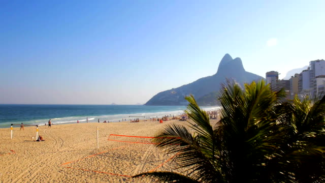 Aerial drone rise through palm trees of Leblon beach, Rio de Janeiro, Brazil at sunset video