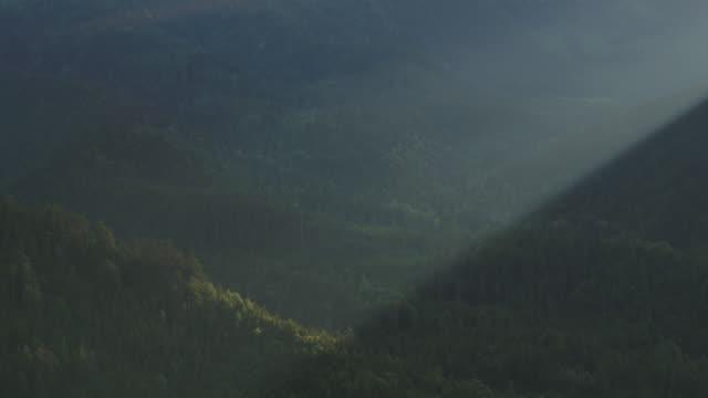 aerial drone shot detail of light hitting a mountain forest - styria filmów i materiałów b-roll
