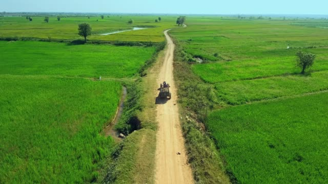 aerial drone shot : low fly behind a farmer driving a two-wheel tractor through rice fields - cocchio video stock e b–roll