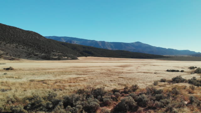 Aerial Drone Shot of a Brown Desert Plain at the Base of Mountains in Utah under a Clear, Blue Sky Aerial Drone Shot of a Brown Desert Plain at the Base of Mountains in Utah under a Clear, Blue Sky wild west stock videos & royalty-free footage