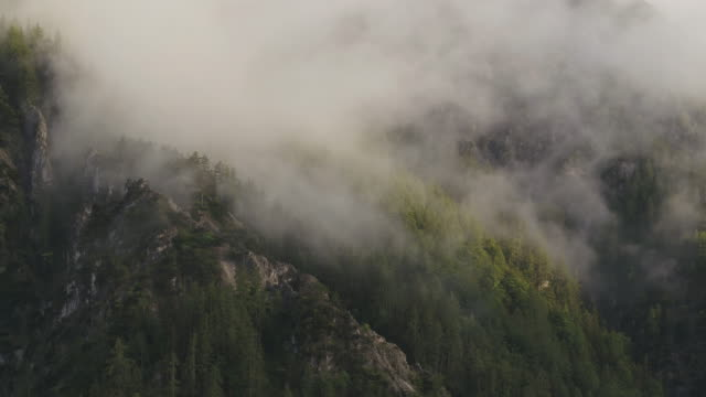 aerial drone shot of a forested mountain side with misty clouds - styria filmów i materiałów b-roll