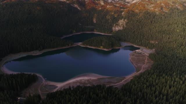 luftdrohne von einem see umgeben von bäumen und bergen in durmitor nationalpark - kieferngewächse stock-videos und b-roll-filmmaterial