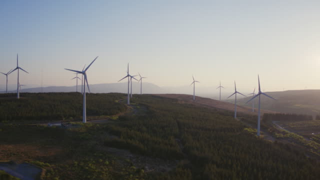 vídeos de stock e filmes b-roll de aerial drone shot of wind energy turbines on field - organismo vivo