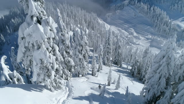 aerial drone shot one person skiing down mountain forest in washington state stevens pass cascades - sci attrezzatura sportiva video stock e b–roll