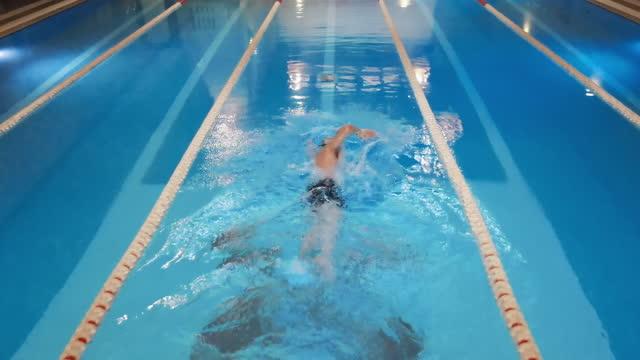 vídeos de stock, filmes e b-roll de vista aérea, drone de cima para baixo do nadador profissional, nadando na piscina. imagens de 4k de alta qualidade - natação