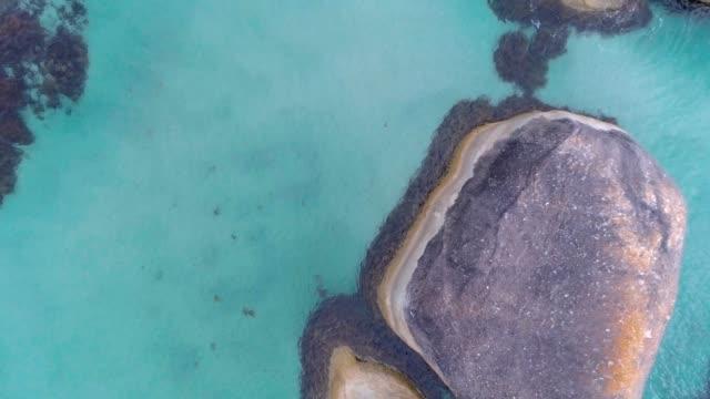 aerial drone video of sea - western australia stock videos & royalty-free footage