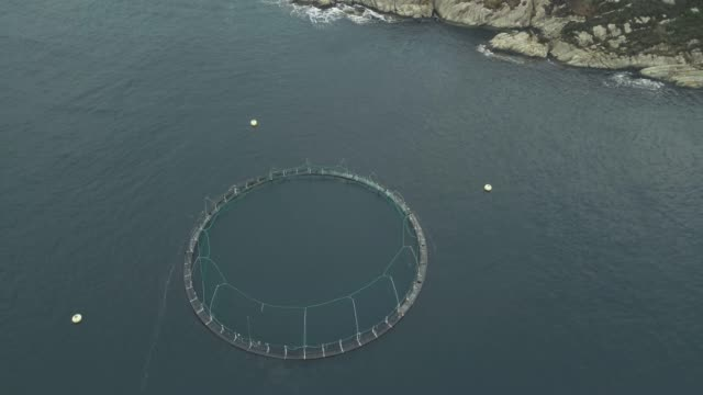 Aerial drone view: fish farming in Norway video
