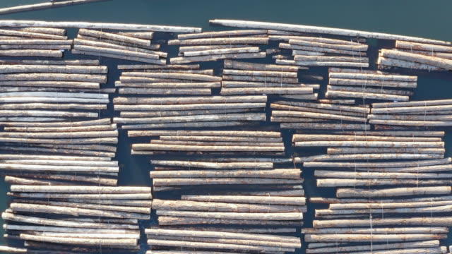 Aerial Drone View Logs Tied Together in Water Logging Industry Background