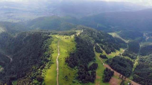 aerial drone view berge mit grünem gras und grünen bäumen bedeckt. blick auf die mit dichten wäldern bedeckten berggipfel. fabelhafte aussicht auf die karpaten in der ukraine. - kieferngewächse stock-videos und b-roll-filmmaterial